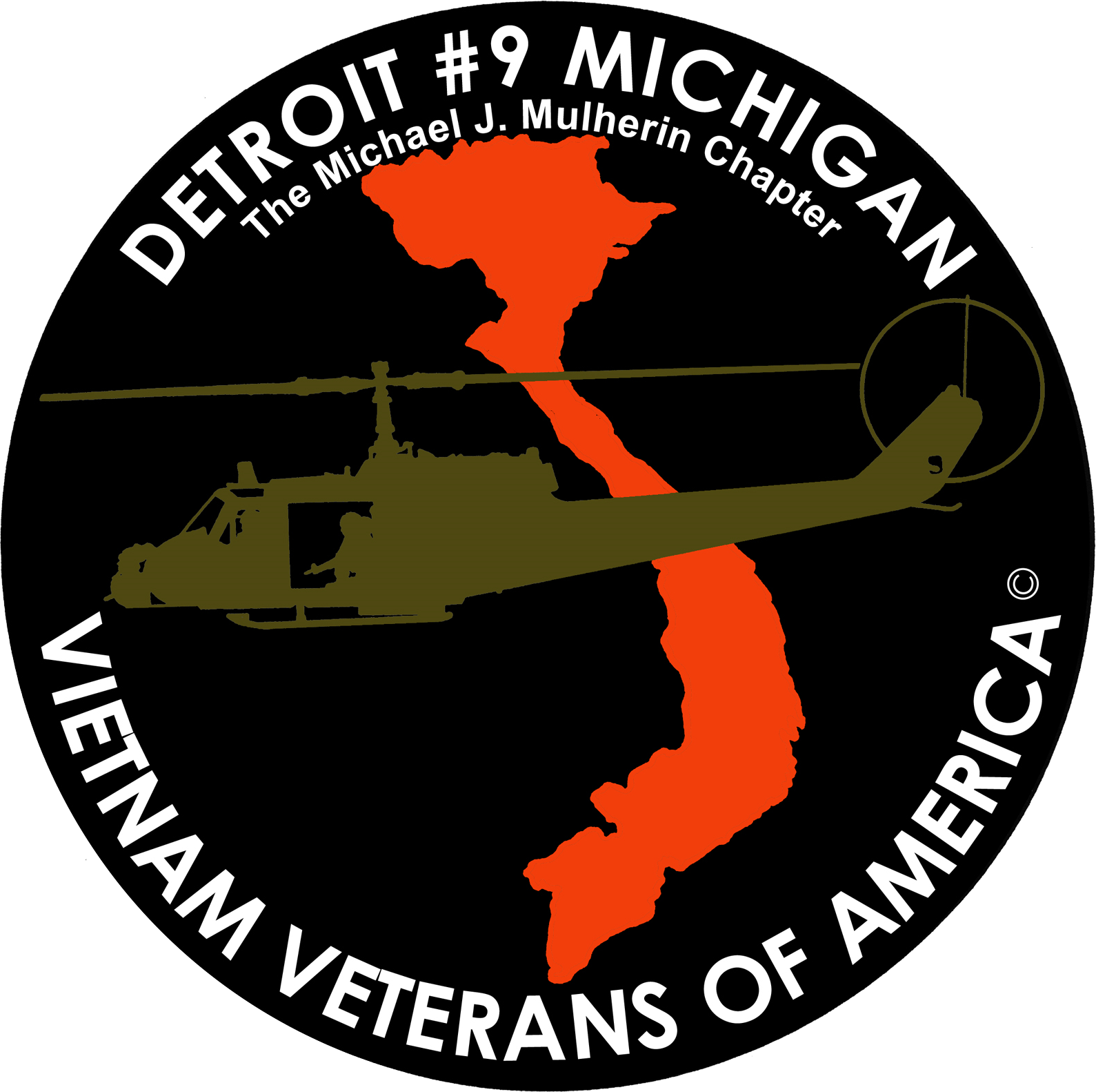 Vietnam Veterans of America, Detroit Chapter 9